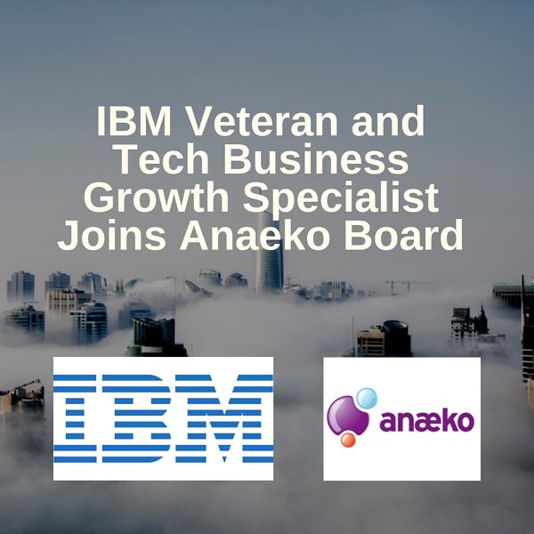 ibm-veteran-tech-business-growth-specialist-joins-anaeko-board